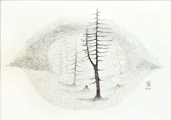 Originální kresba s motivem několika stromů na pasece